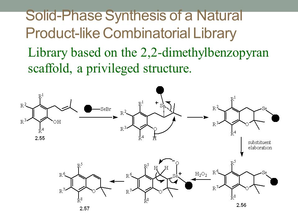 Solid-Phase Synthesis of a Natural Product-like Combinatorial Library