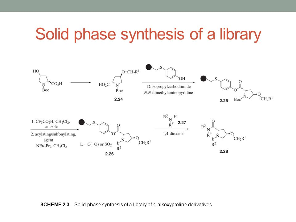 Solid phase synthesis of a library