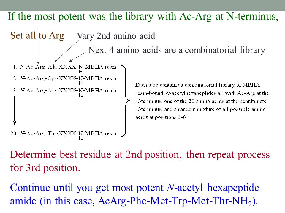 If the most potent was the library with Ac-Arg at N-terminus,