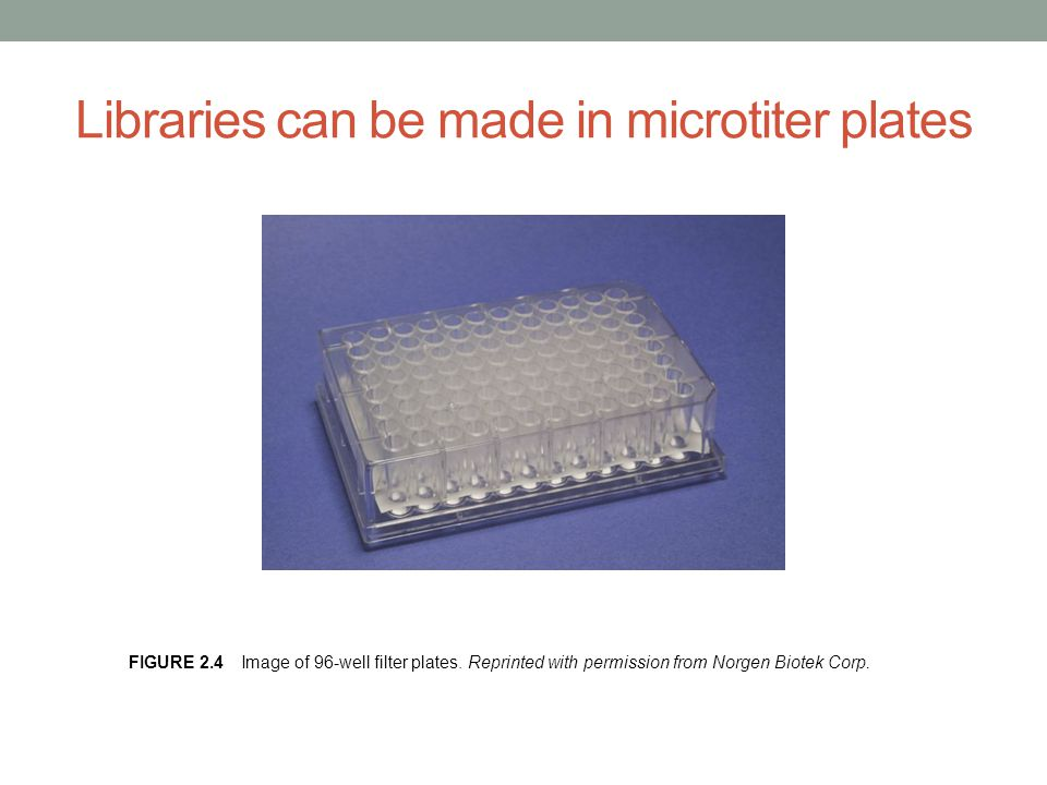 Libraries can be made in microtiter plates