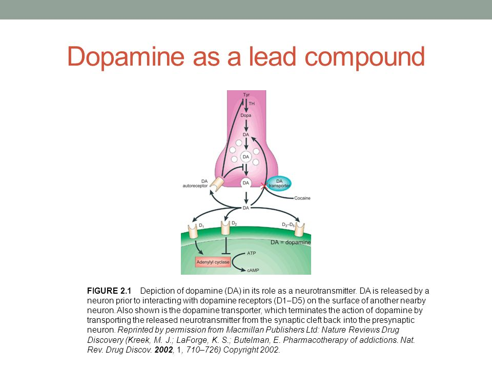 Dopamine as a lead compound