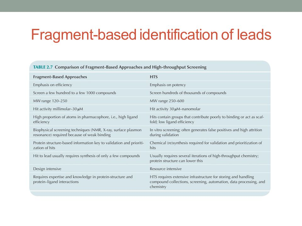 Fragment-based identification of leads