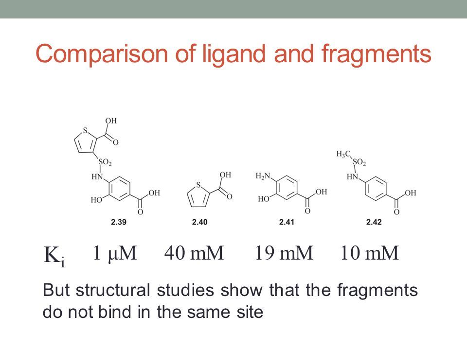 Comparison of ligand and fragments