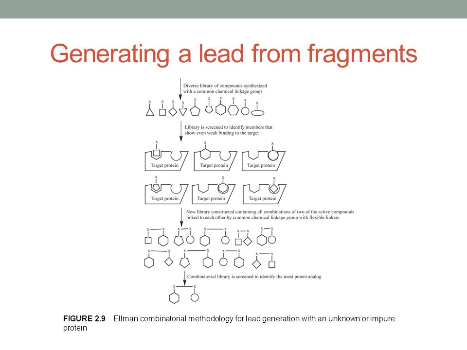 Generating a lead from fragments