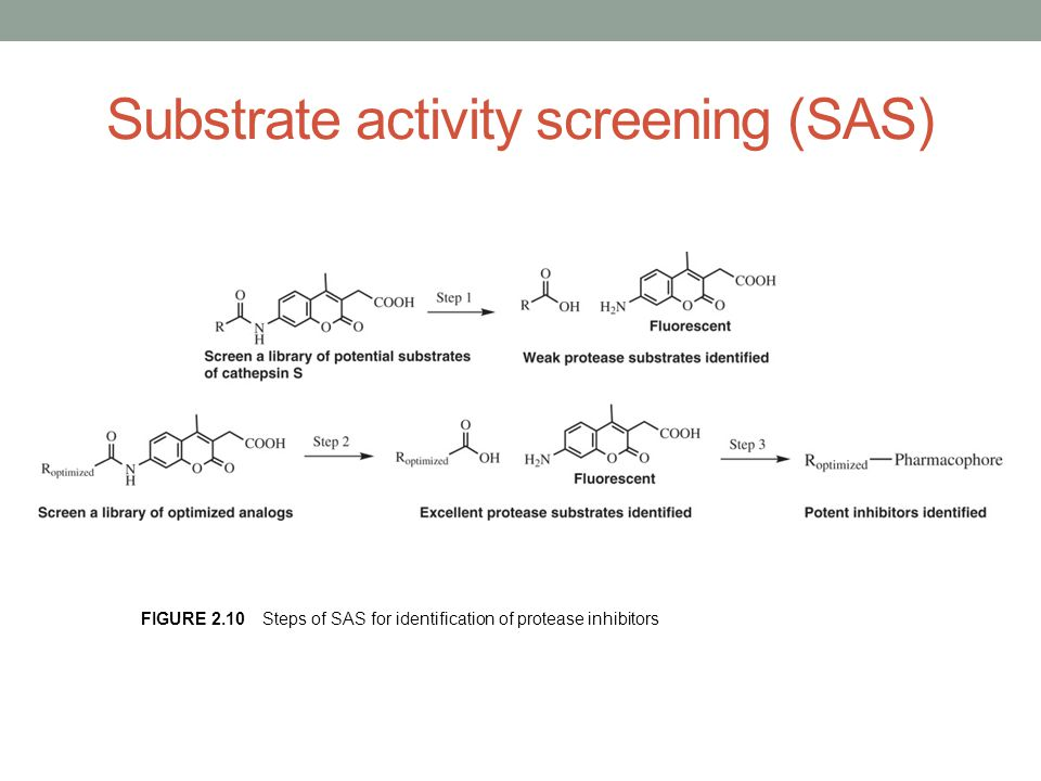 Substrate activity screening (SAS)