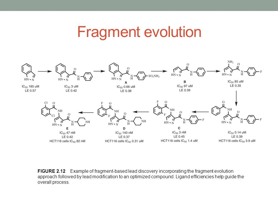 Fragment evolution