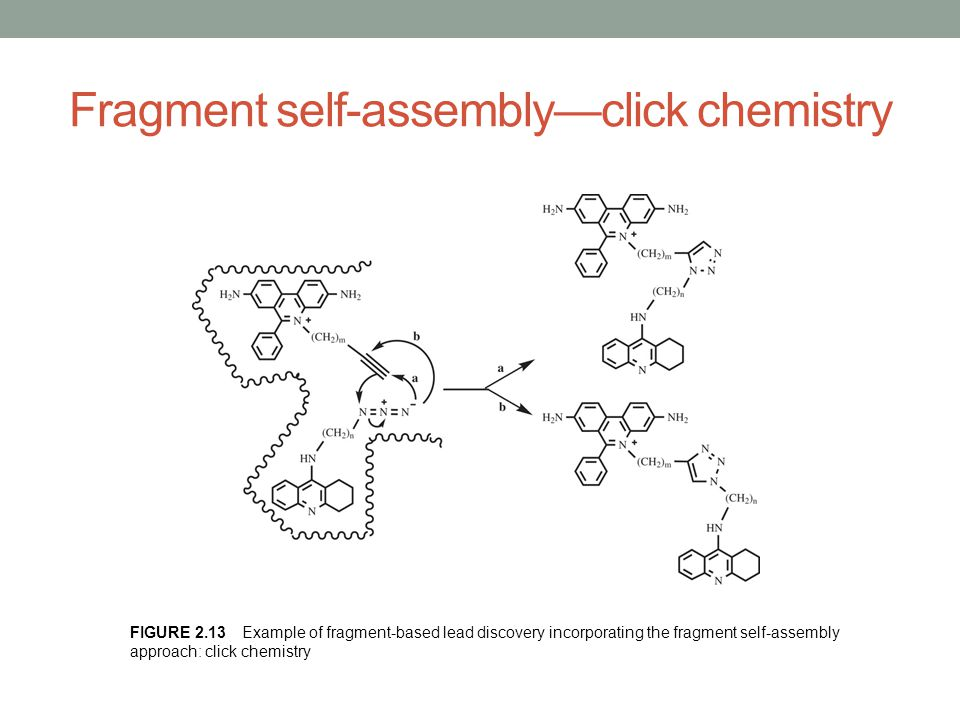 Fragment self-assembly—click chemistry