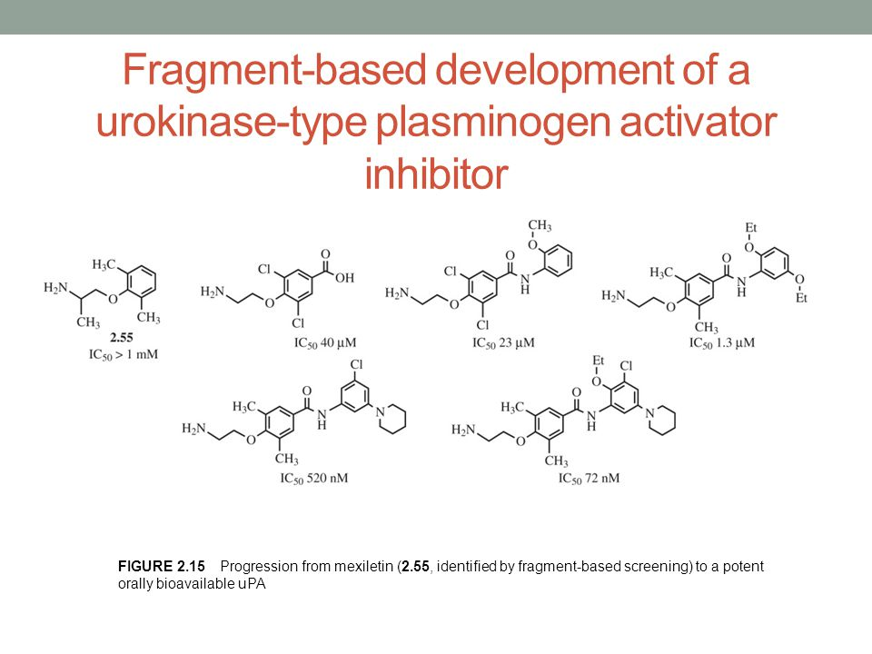 Fragment-based development of a urokinase-type plasminogen activator inhibitor