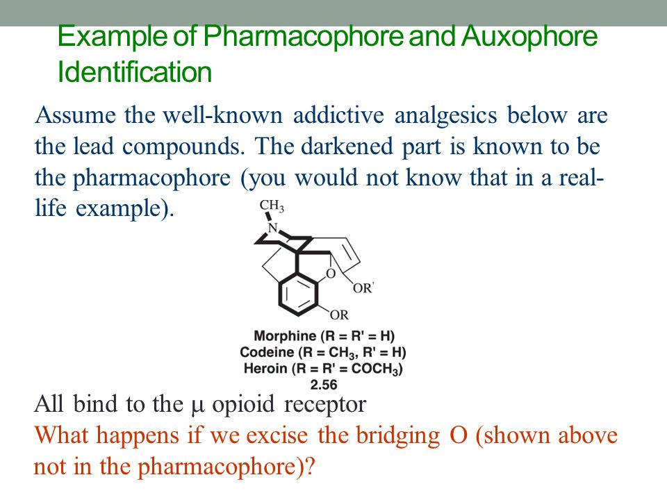Example of Pharmacophore and Auxophore Identification