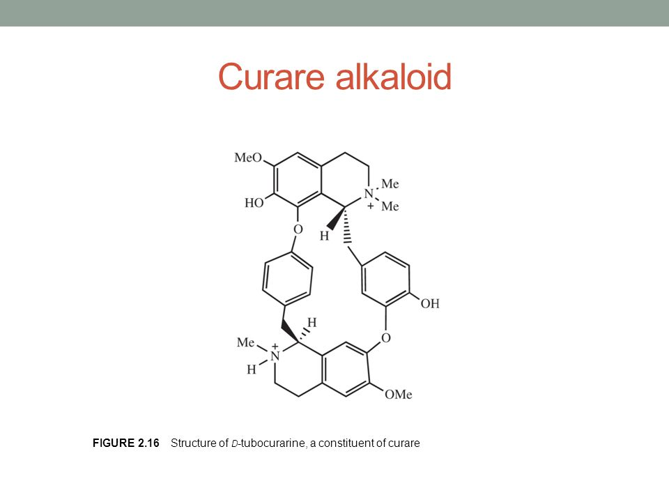 Curare alkaloid Figure 2.16 Structure of d-tubocurarine, a constituent of curare