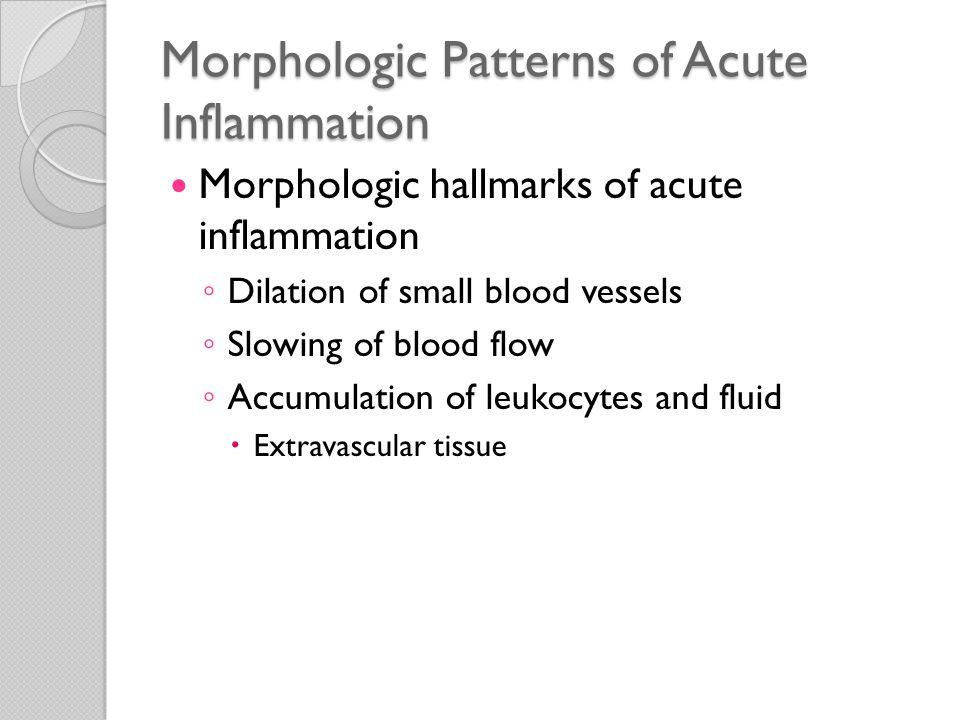 Morphologic Patterns of Acute Inflammation