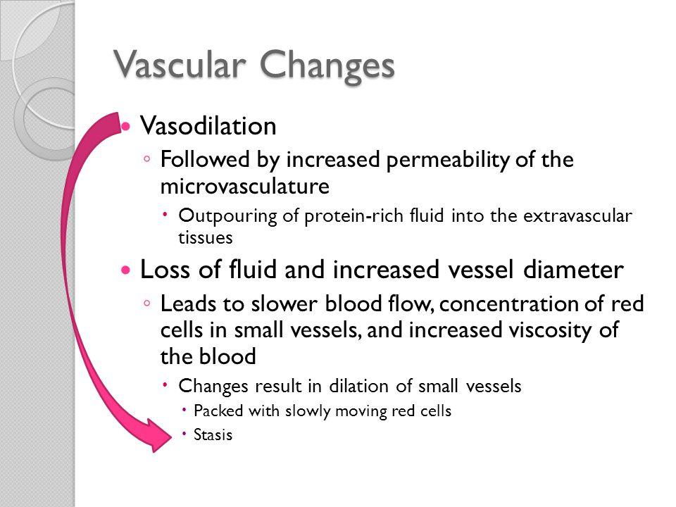 Vascular Changes Vasodilation