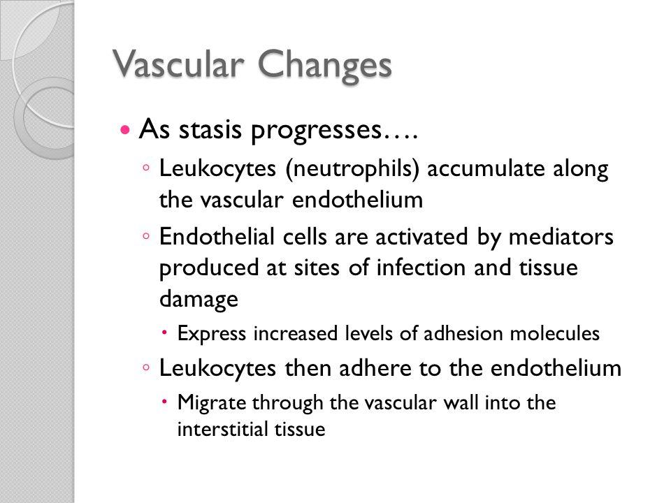 Vascular Changes As stasis progresses….