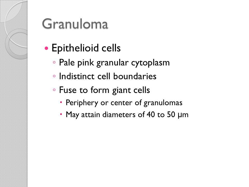 Granuloma Epithelioid cells Pale pink granular cytoplasm