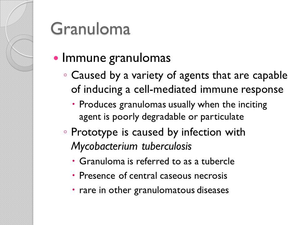 Granuloma Immune granulomas