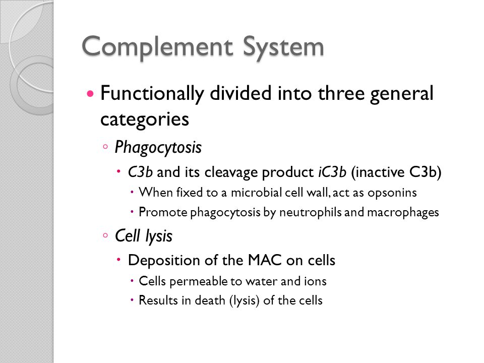 Complement System Functionally divided into three general categories