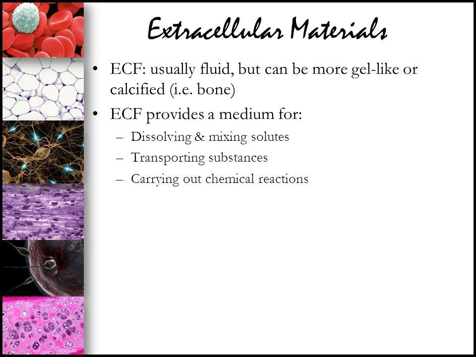 Extracellular Materials