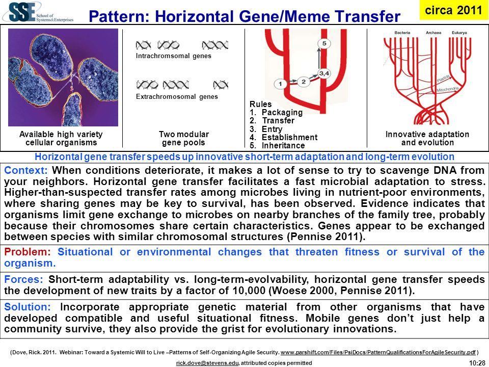 Pattern: Horizontal Gene/Meme Transfer