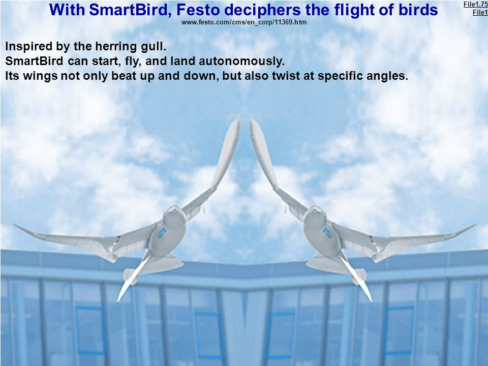 With SmartBird, Festo deciphers the flight of birds