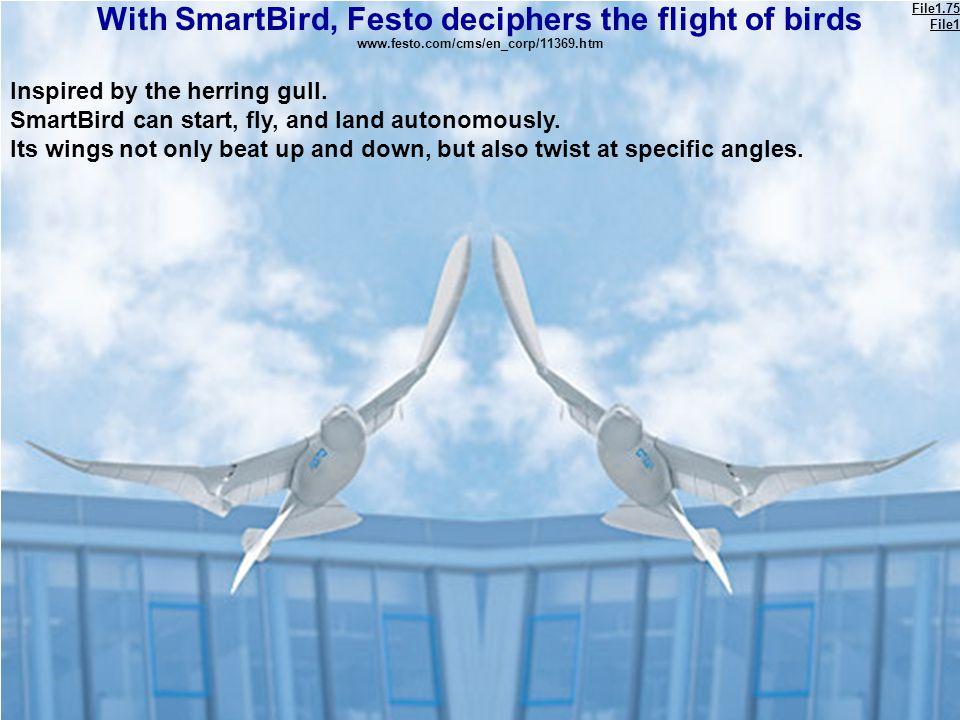 With SmartBird, Festo deciphers the flight of birds