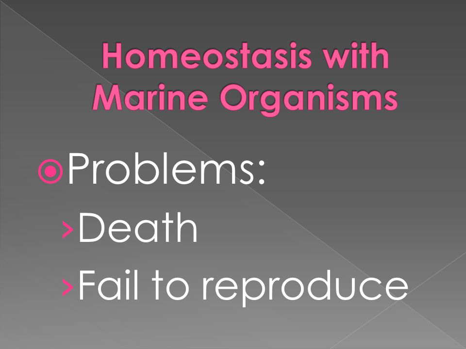 Homeostasis with Marine Organisms