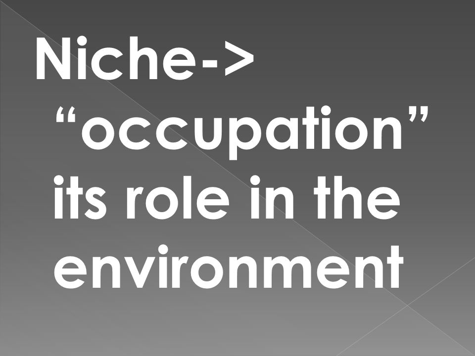 Niche-> occupation its role in the environment