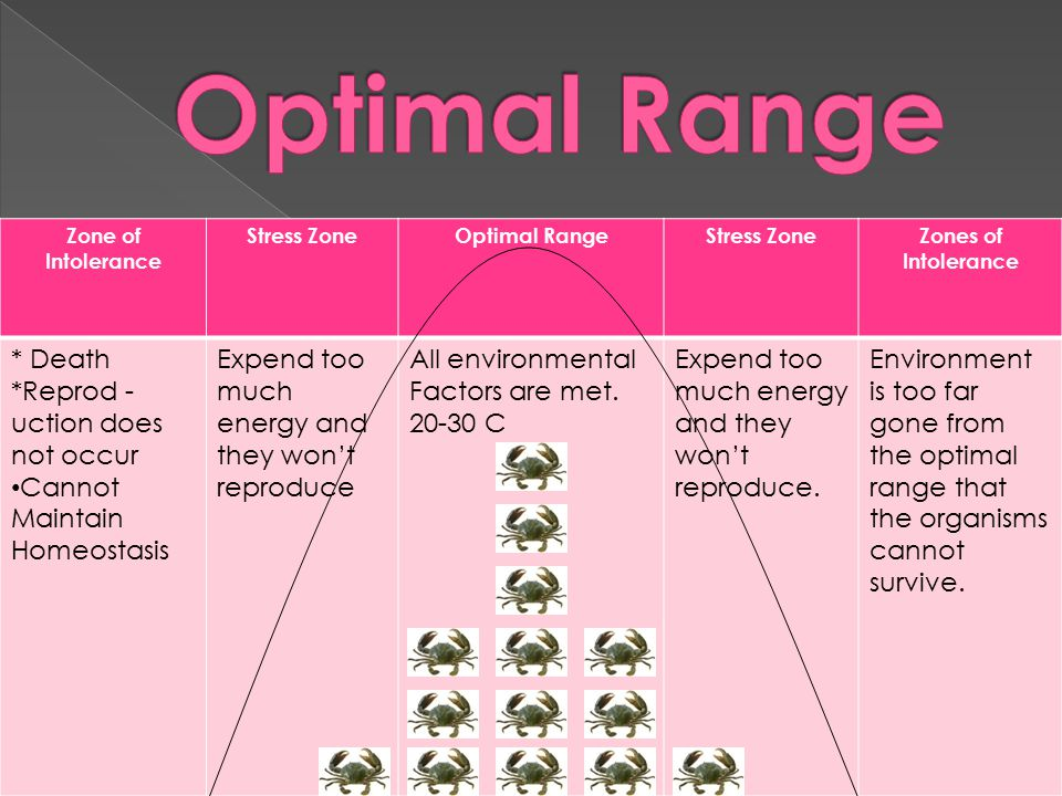 Optimal Range * Death *Reprod -uction does not occur Cannot Maintain