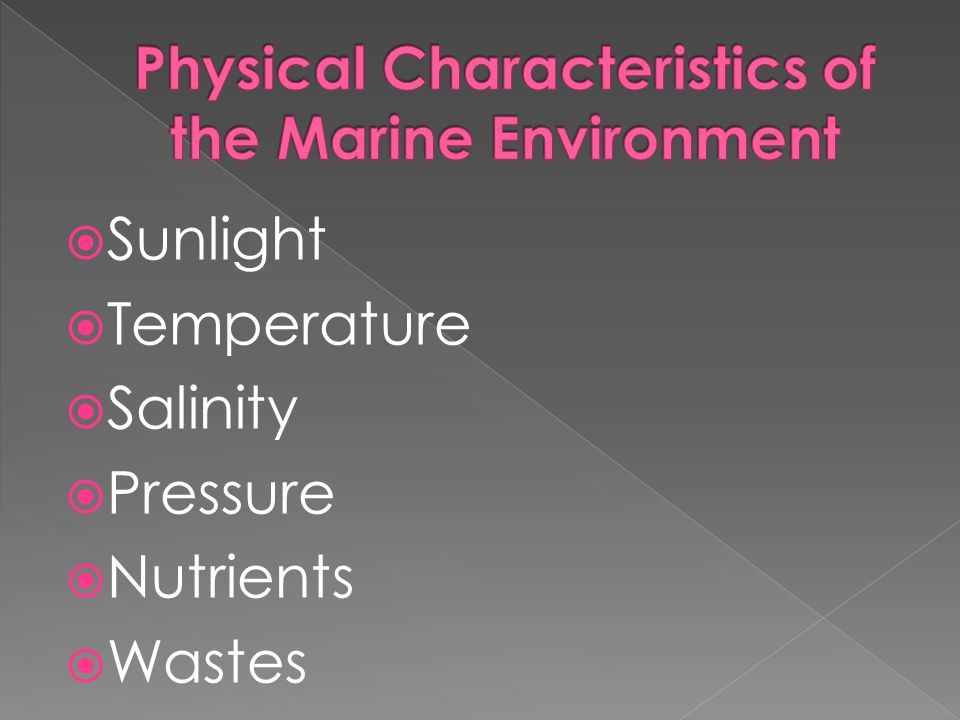 Physical Characteristics of the Marine Environment