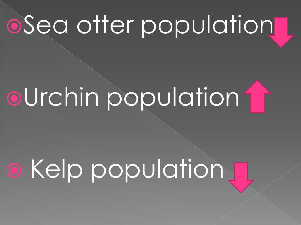 Sea otter population Urchin population Kelp population