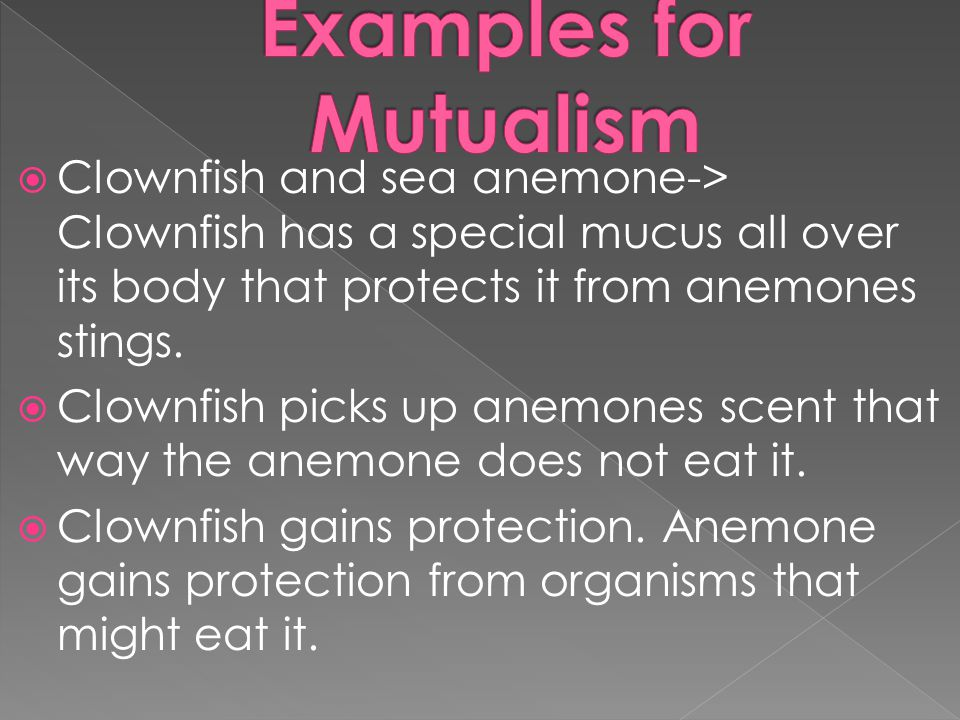 Examples for Mutualism