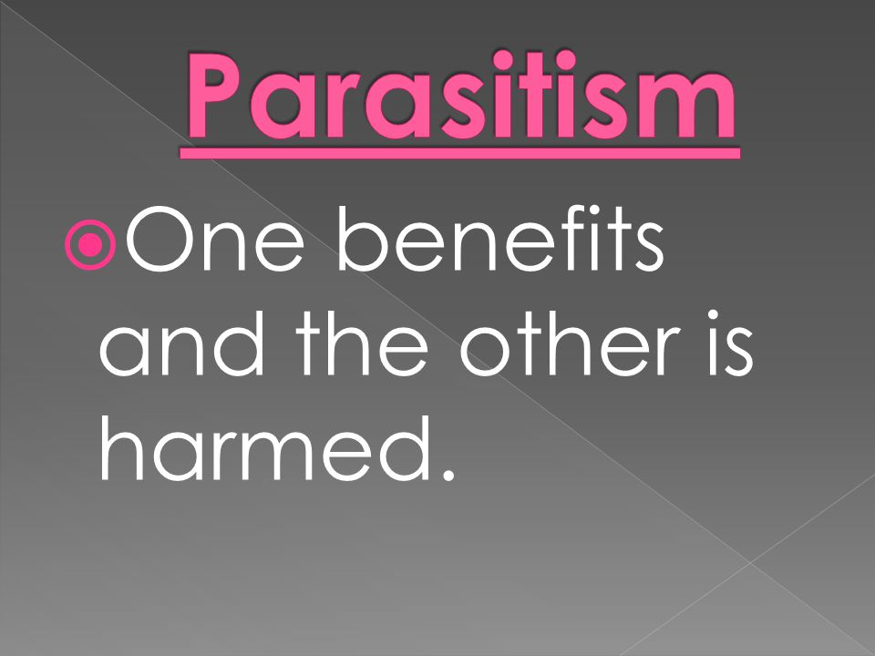 Parasitism One benefits and the other is harmed.
