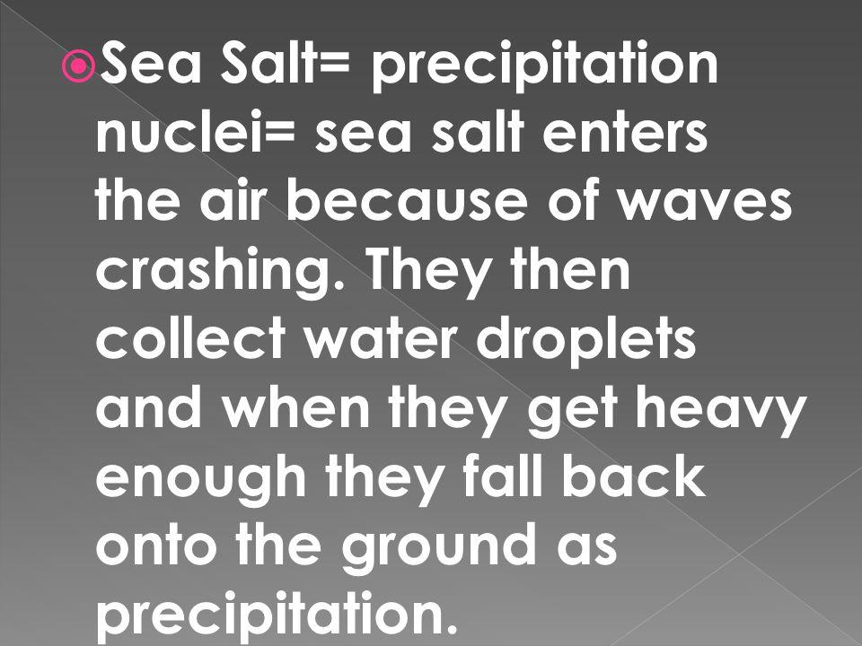 Sea Salt= precipitation nuclei= sea salt enters the air because of waves crashing.