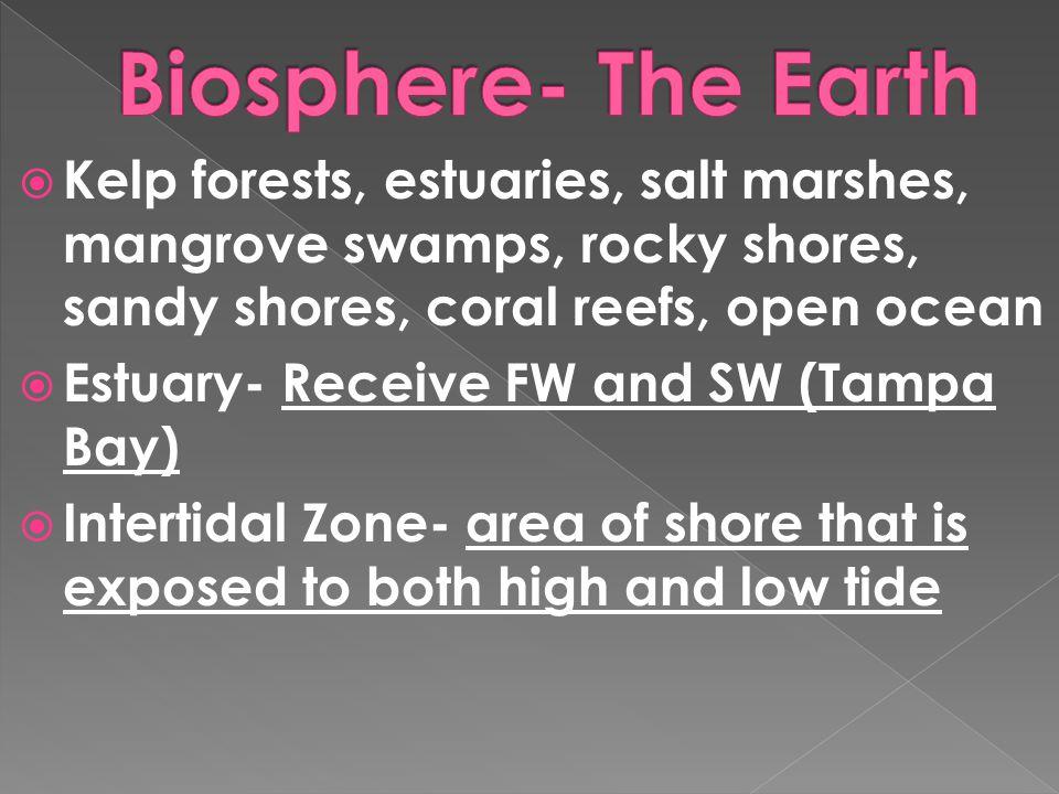 Biosphere- The Earth Kelp forests, estuaries, salt marshes, mangrove swamps, rocky shores, sandy shores, coral reefs, open ocean.