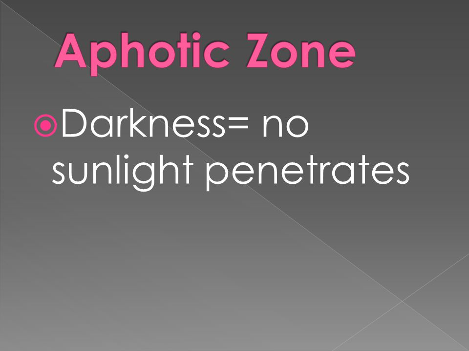 Aphotic Zone Darkness= no sunlight penetrates
