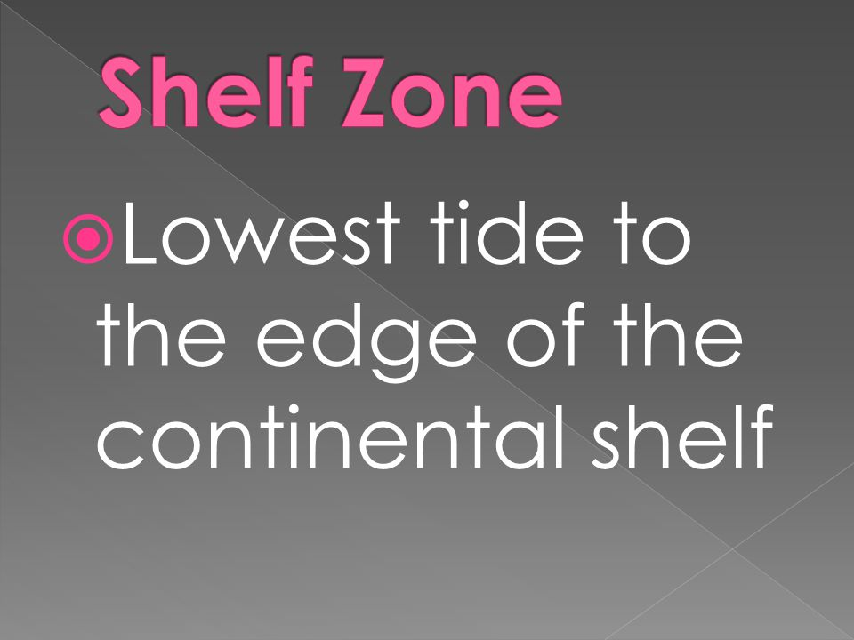Shelf Zone Lowest tide to the edge of the continental shelf