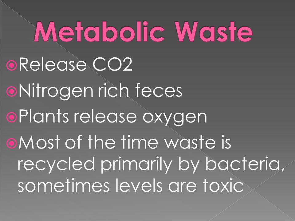 Metabolic Waste Release CO2 Nitrogen rich feces Plants release oxygen
