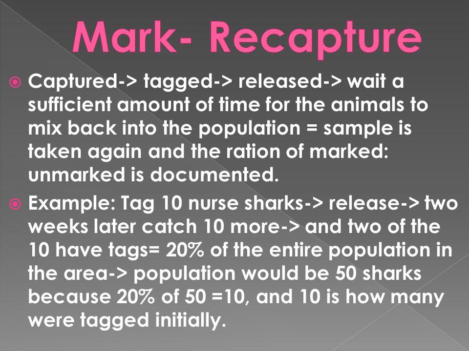 Mark- Recapture