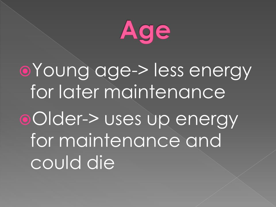 Age Young age-> less energy for later maintenance