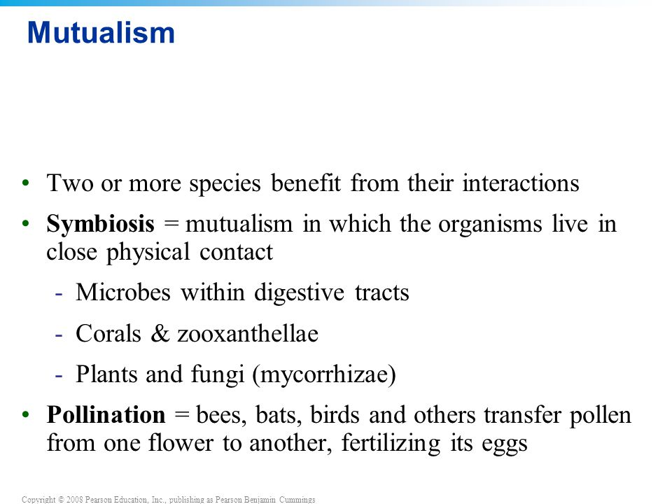 Mutualism Two or more species benefit from their interactions
