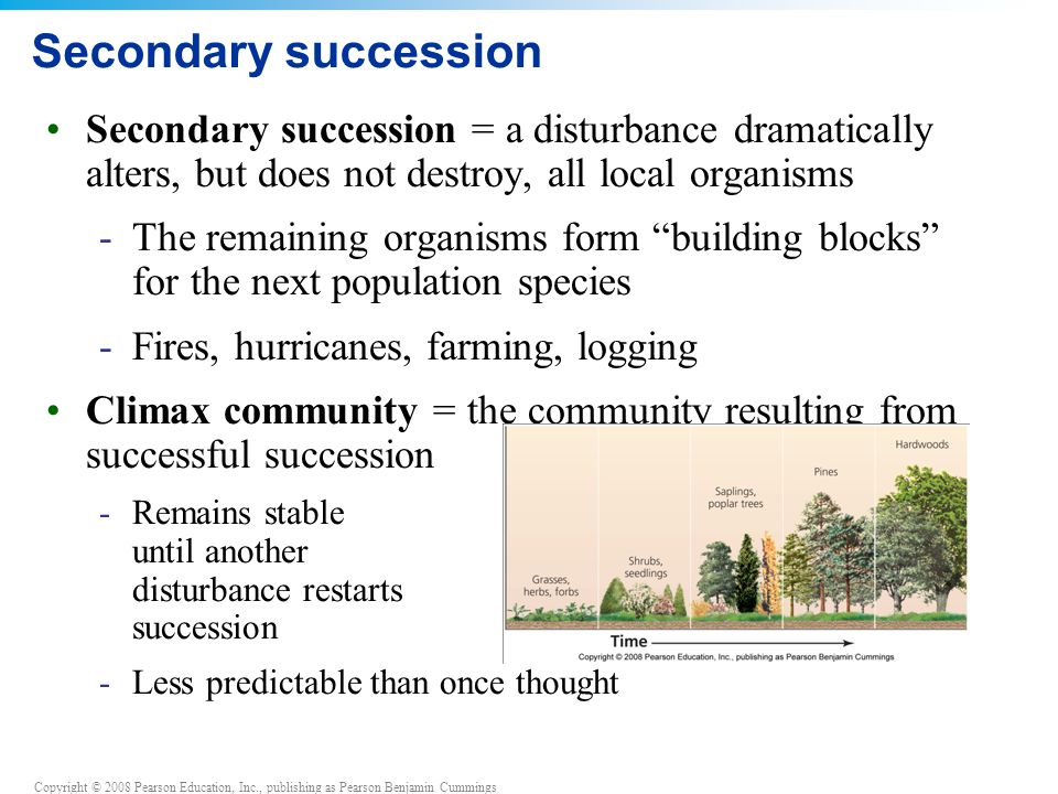 Secondary succession Secondary succession = a disturbance dramatically alters, but does not destroy, all local organisms.