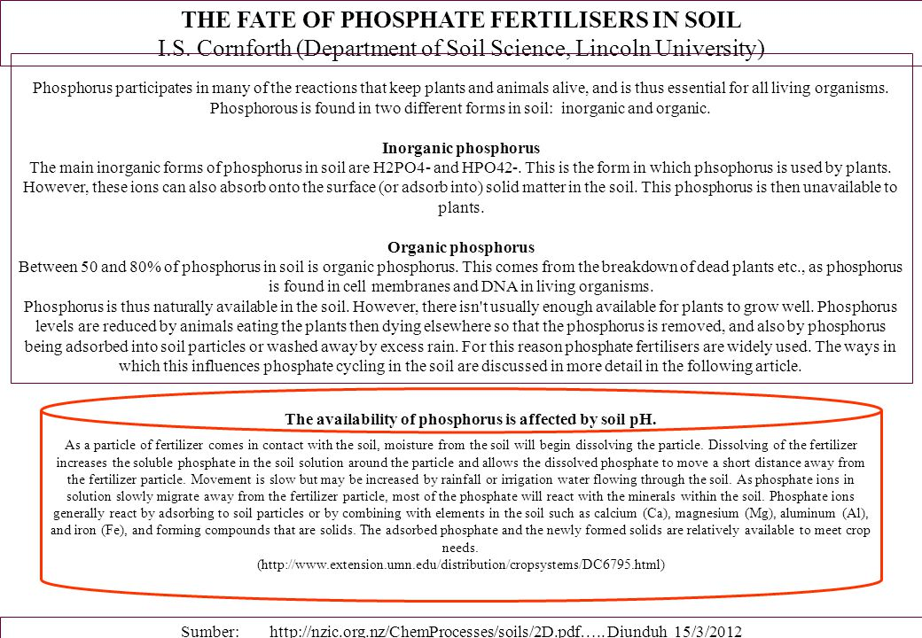 THE FATE OF PHOSPHATE FERTILISERS IN SOIL