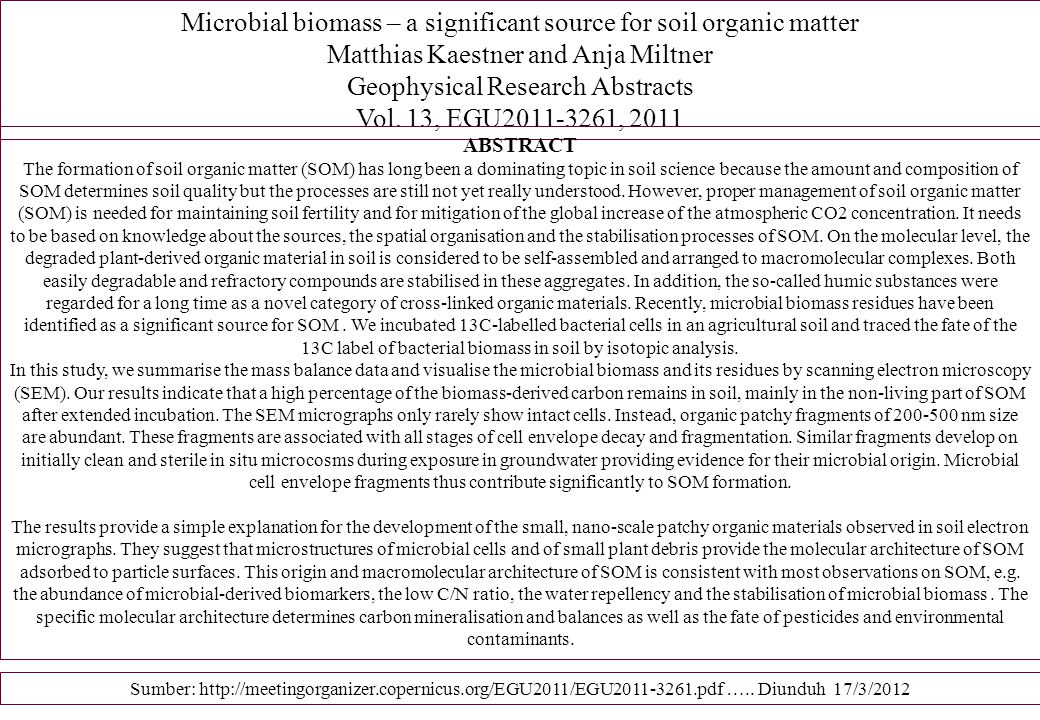 Microbial biomass – a significant source for soil organic matter