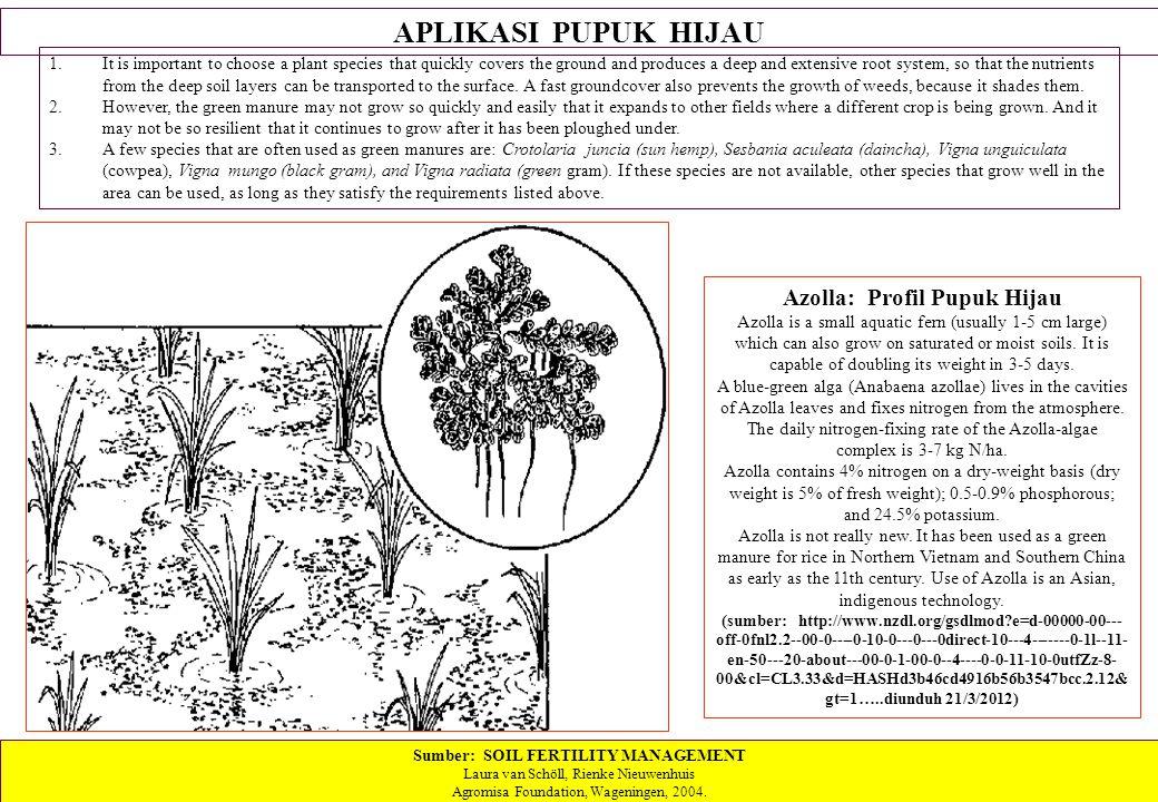 Azolla: Profil Pupuk Hijau Sumber: SOIL FERTILITY MANAGEMENT