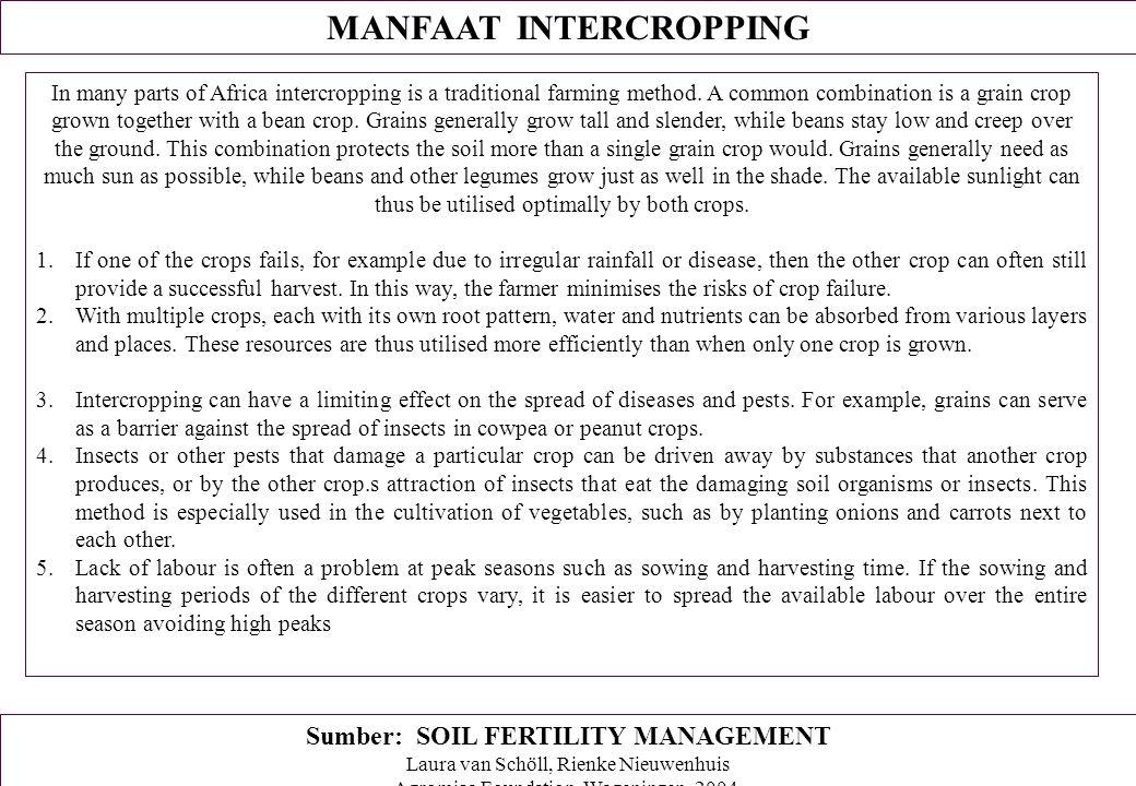 MANFAAT INTERCROPPING Sumber: SOIL FERTILITY MANAGEMENT