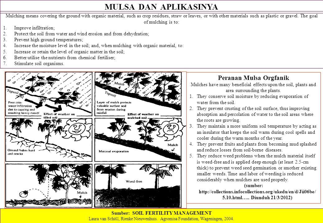 Peranan Mulsa Orgfanik Sumber: SOIL FERTILITY MANAGEMENT