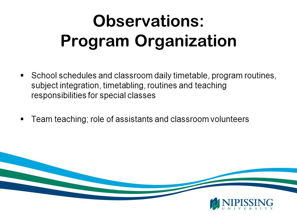 Observations: Program Organization