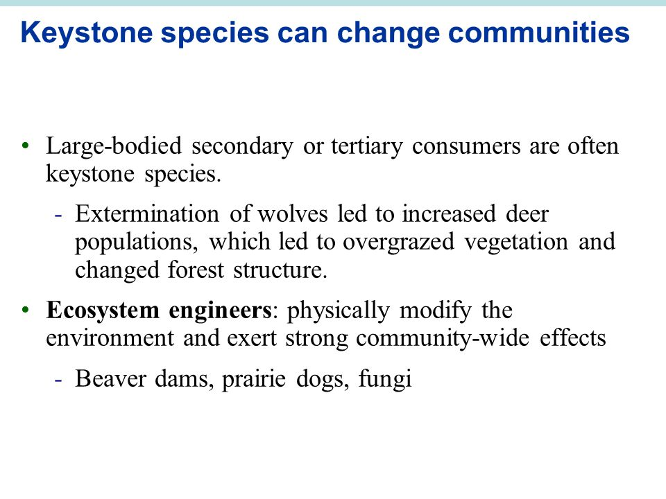Keystone species can change communities