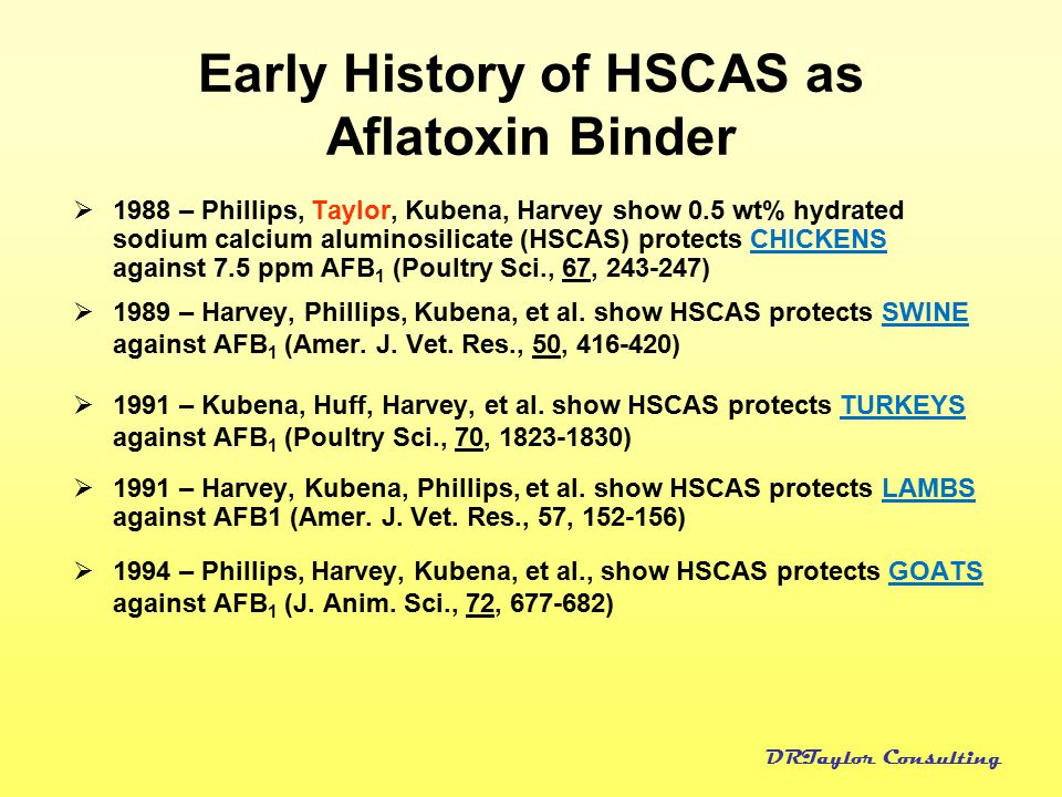 Early History of HSCAS as Aflatoxin Binder