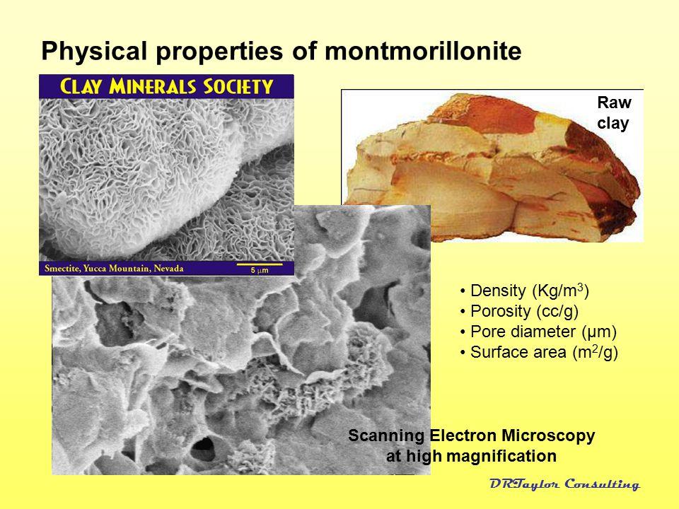 Physical properties of montmorillonite