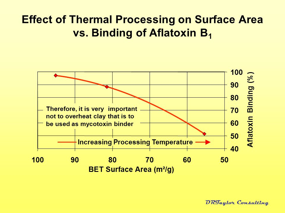 Effect of Thermal Processing on Surface Area vs